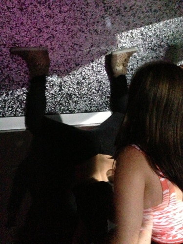 Twerkin On The Wall